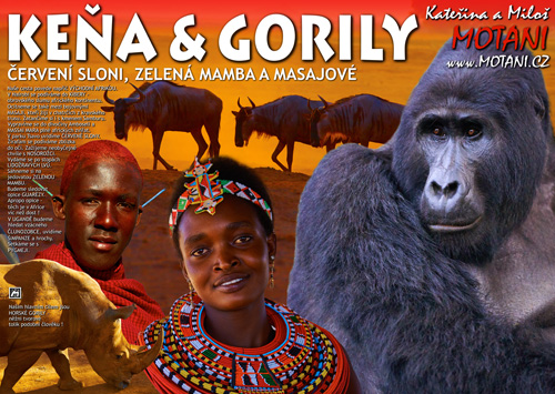 Keňa a gorily